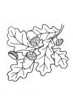 Осень рябина рисунки