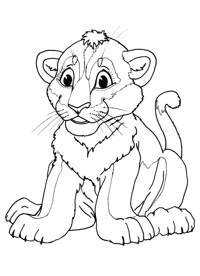 Ausmalbilder Für Kinder Junger Löwe