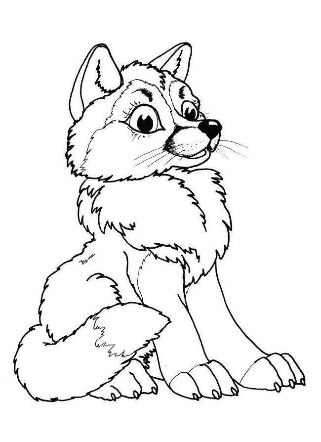junger Fuchs Ausmalbilder Tiere