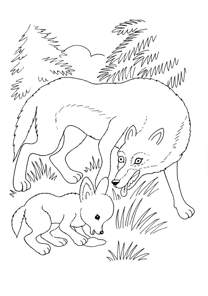Wolf mit Jungem Ausmalbilder Tiere