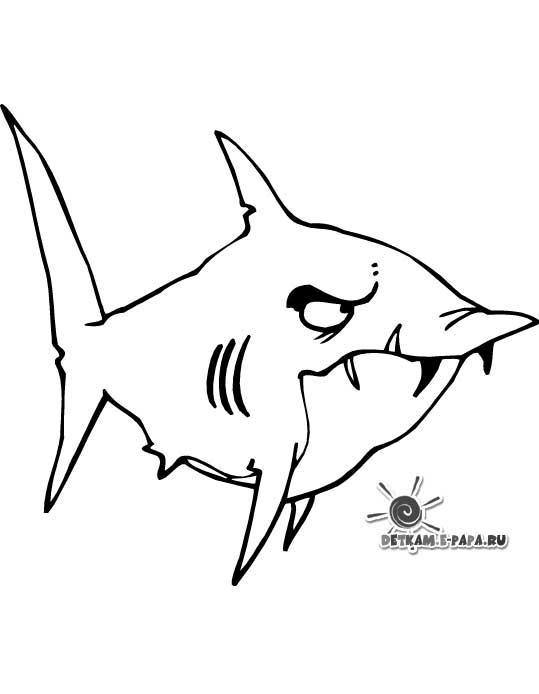 Ausmalbilder für Kinder Haie