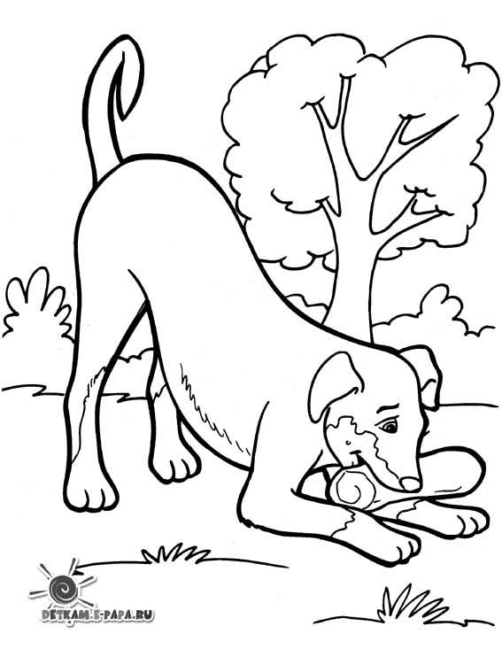 Ausmalbilder für Kinder Hund mit Knochen