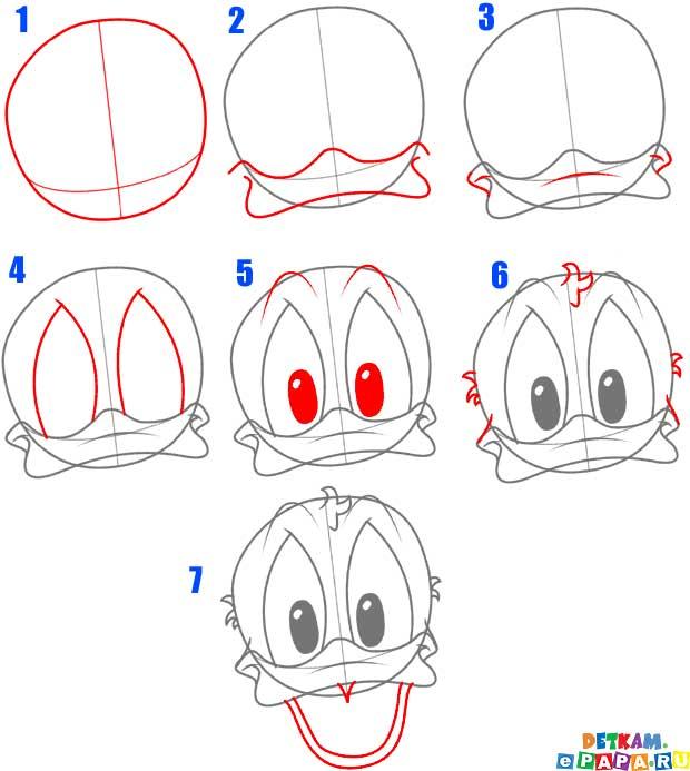 donald duck zeichnen lernen comictiere zeichnen lernen zeichnen lernen. Black Bedroom Furniture Sets. Home Design Ideas